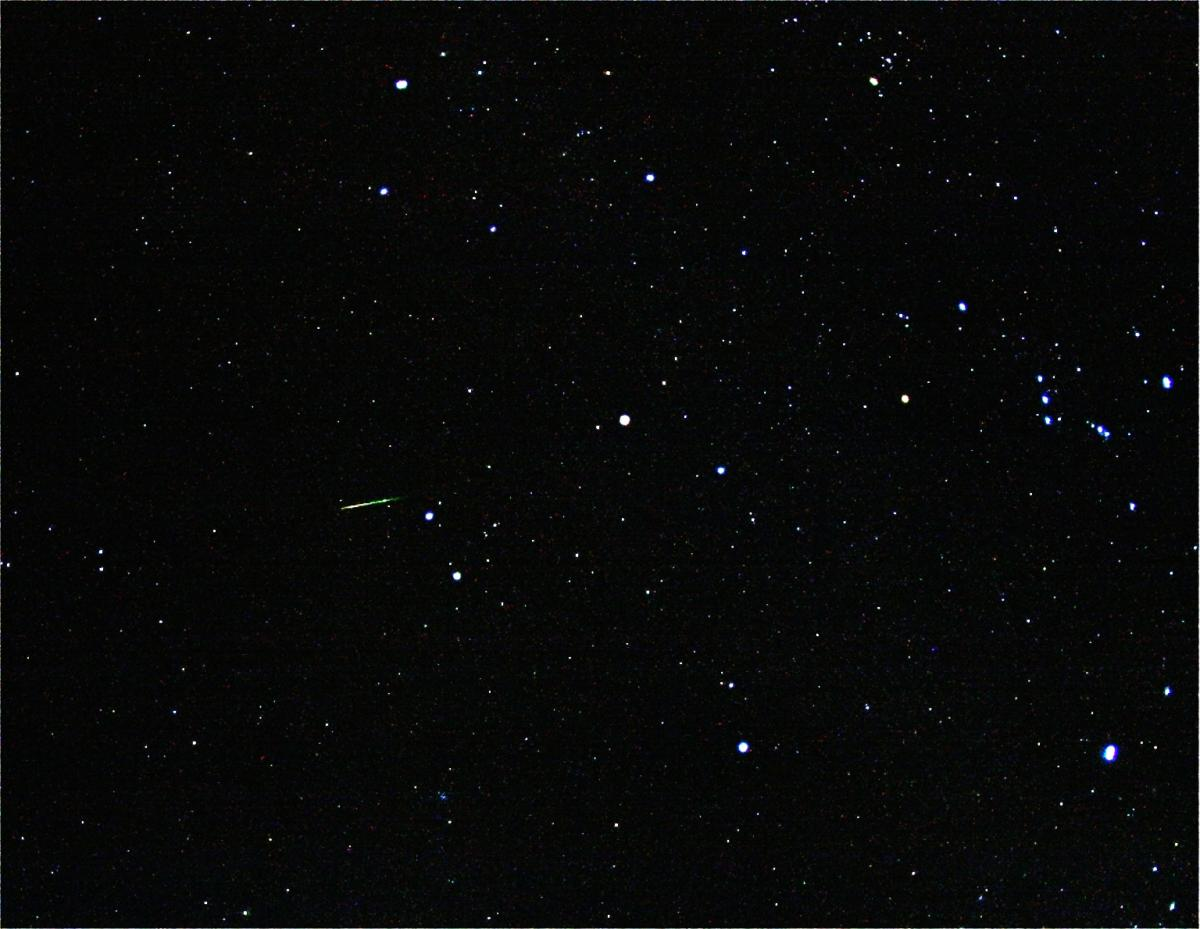 Green Orionid Meteor